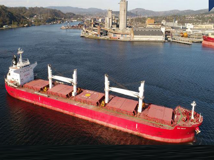 Bulk Carrier For Sale