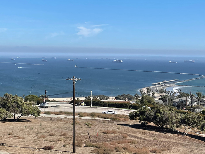 Image tweeted by Marine Exchange of Southern California shows ships on hold in San Pedro Bay.